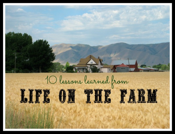 life-on-the-farm